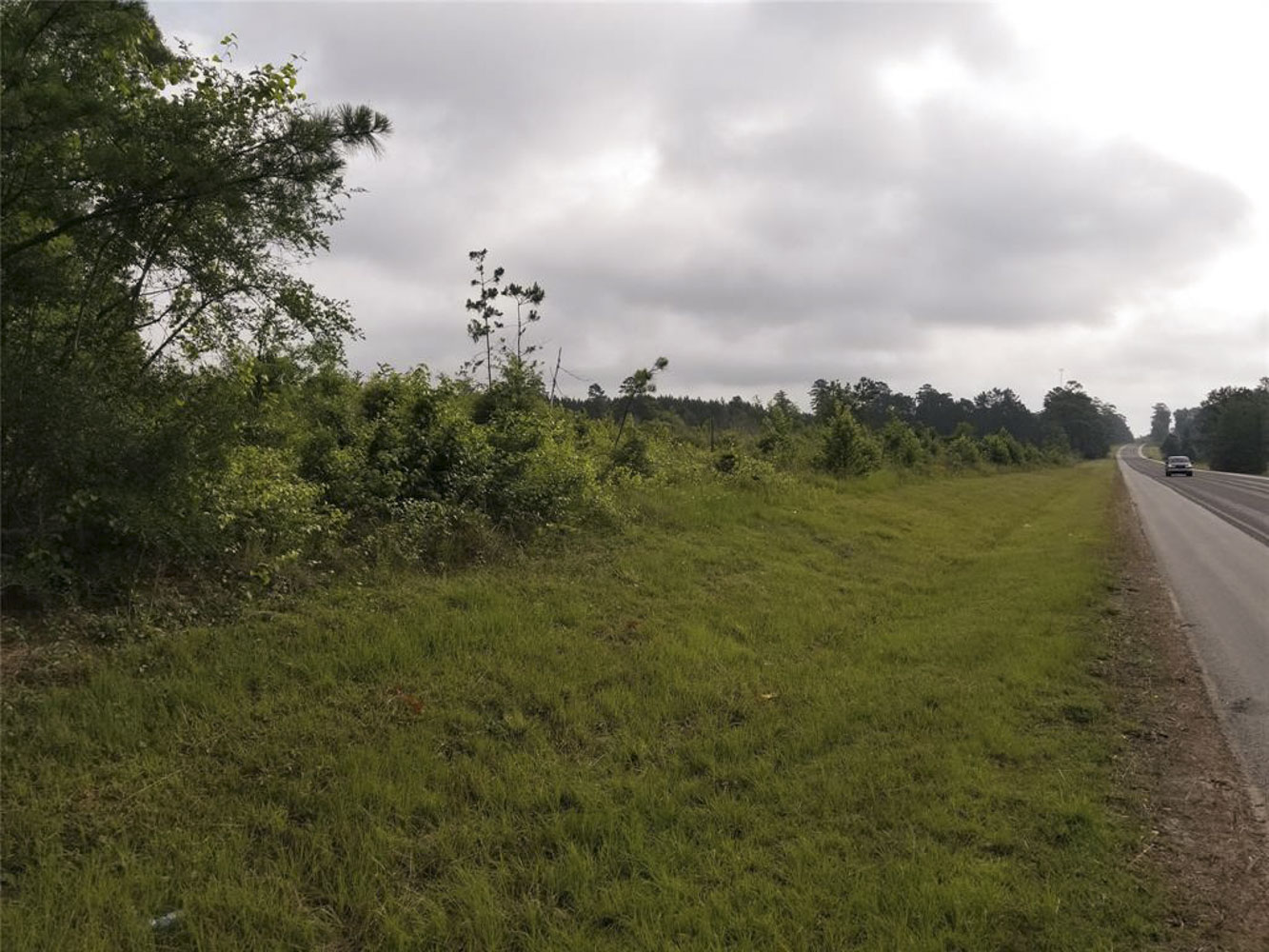 16+/- acres / 000 US Hwy 190 E, Woodville