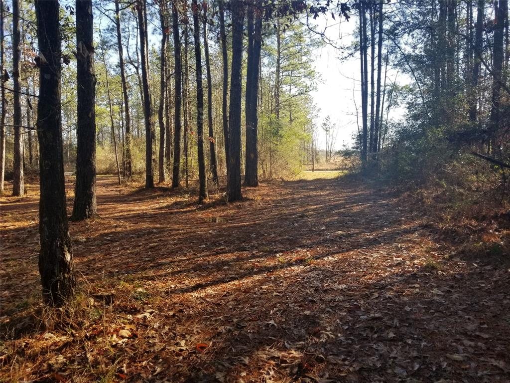 000 County Road 701, Kirbyville